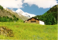 Snow, Mountains, Grass, Chalets, J'adore Les Alpes