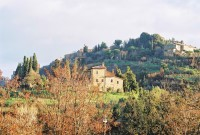 Montepulciano in the sun