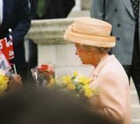 The Queen blooms !